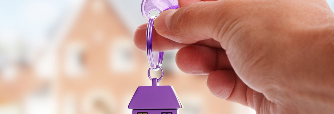Real Estate & Property Sector